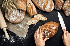 Woman hands cutting a loaf of bread on rustic wooden board, with wheat ears and knife, top view. Still Life. Flat lay Royalty Free Stock Image