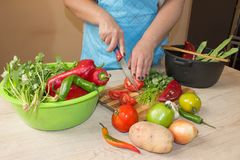 Woman hands cutting vegetables on kitchen blackboard. Healthy food. Woman preparing vegetables, cooking healthy meal in the kitche Stock Image