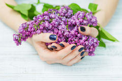 Woman hands with dark blue manicure and lilac flowers. Woman cupped hands with beautiful dark blue manicure on fingernails holding lilac flowers royalty free stock photo