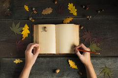Woman hands drawing or writing with pencil in vintage open notebook over wooden background. Autumn still life. Stock Photos