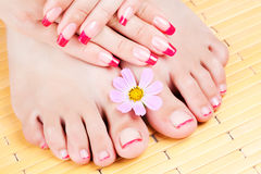 Woman hands and feet with pink manicure Royalty Free Stock Photo