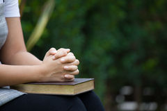 Woman hands folded in prayer on a Holy Bible  for faith concept. In nature green background Stock Image