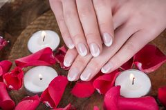 Woman hands with french nails polish style and wooden bowl with water and floating candles and red rose petals stock image