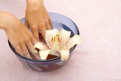 Woman hands with french pedicure stock photography