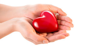 Woman hands giving heart Stock Images