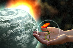 Woman hands giving life. Woman hands giving flower to grey planet in open cosmos royalty free stock image