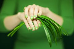 Woman hands with green nail polish holding some tropical leaves. Sensual studio shot can be used as background Stock Photos