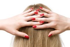 Woman hands on head Royalty Free Stock Photo