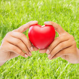 Woman hands with heart. Health and charity concept - close up of woman hands holding heart Royalty Free Stock Photos