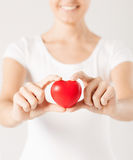 Woman hands with heart Stock Image