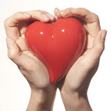 Woman hands and heart. Woman Hands holding a red heart Stock Photography