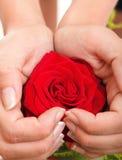 Woman hands heart with rose petals. Woman hands heart with red rose petals Stock Image