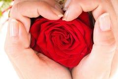 Woman hands heart with rose petals. Woman hands heart with red rose petals Royalty Free Stock Images
