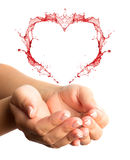 Woman hands. With heart shape isolated on a white background Stock Images