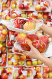 Woman hands hold apples in store Stock Image