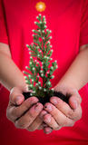 Woman hands hold small christmas Royalty Free Stock Photo