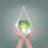 Woman hands  hold water drop Stock Images