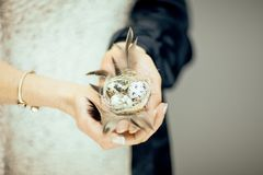 Woman hands holding birdnest in her hands, light pastel colors. Can be used as romantic background Royalty Free Stock Photography