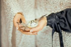 Woman hands holding birdnest in her hands, light pastel colors. Can be used as romantic background Stock Photo