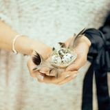 Woman hands holding birdnest in her hands, light pastel colors. Can be used as romantic background Stock Images
