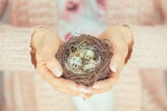 Woman hands holding birdnest in her hands, light pink pastel colors. Can be used as romantic background Stock Images