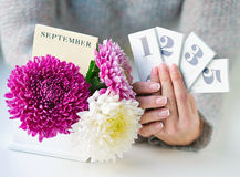 Woman hands holding calendar dates Stock Photos