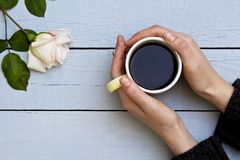 Woman hands holding coffee cup with white rose on wooden background. stock photography