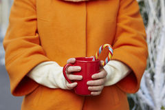 Woman hands holding a cozy mug with hot cocoa Stock Photography