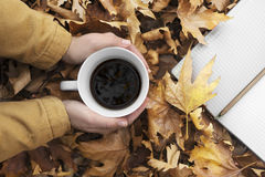 Woman hands holding cup of coffee over leaves background. Royalty Free Stock Photo