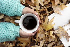 Woman hands holding cup of coffee over leaves background. Stock Photography