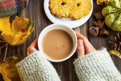 Woman hands holding cup of hot chocolate with cookies , autumn c stock photo