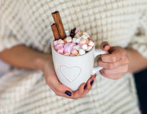 Woman hands holding a cup of hot chocolate with marshmallows Royalty Free Stock Photo