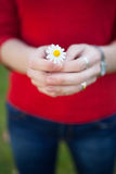 Woman hands holding a daisy. Focus in the flower Royalty Free Stock Images