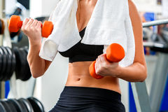 Woman hands holding  dumbbells at gym. Royalty Free Stock Image