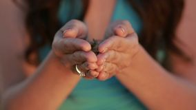Woman hands holding ears and grains of wheat stock footage
