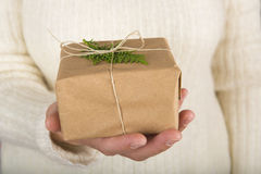 Woman hands holding a gift box Stock Image