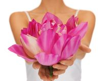 Woman hands holding lotus flower Stock Photos