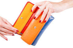 Woman hands holding multicolor wallet Royalty Free Stock Images