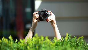 Woman hands holding photo camera behind park bush, private detective, spying