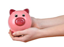 Woman hands holding a pink piggy bank Royalty Free Stock Photography