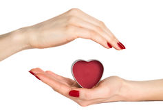 Woman hands holding red heart Stock Images