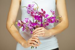 Woman hands holding some violet orchid flowers, sensual studio shot Stock Photos
