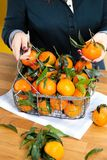 Woman hands with iron basket with fresh clementine copy space royalty free stock photos