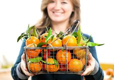 Woman hands with iron basket with fresh clementine copy space stock image