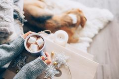 Free Woman Hands Ith Cup Of Hot Chocolate Close Up Image, Cozy Home, Royalty Free Stock Photos - 104795018