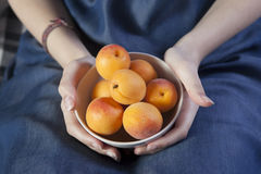 The Woman hands keeping crockery with mellow apricots Royalty Free Stock Image