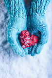 Woman hands in light teal knitted mittens are holding beautiful entwined vintage red heart in a snow. St. Valentine concept. Royalty Free Stock Image