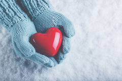 Woman hands in light teal knitted mittens are holding beautiful glossy red heart in snow background. Love, St. Valentine concept Royalty Free Stock Photography