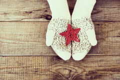 Woman hands in light teal knitted mittens are holding red snowfl Royalty Free Stock Image