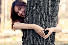 Woman hands making a heart shape around a big tree Royalty Free Stock Photos